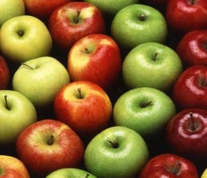 agricoltura biologica mele